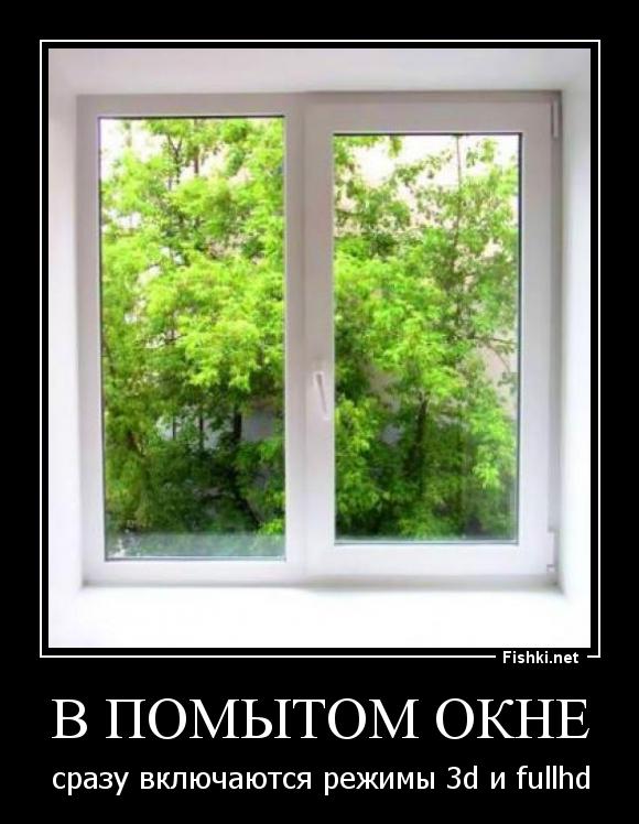 Картинки на окно прикольные, наш мир