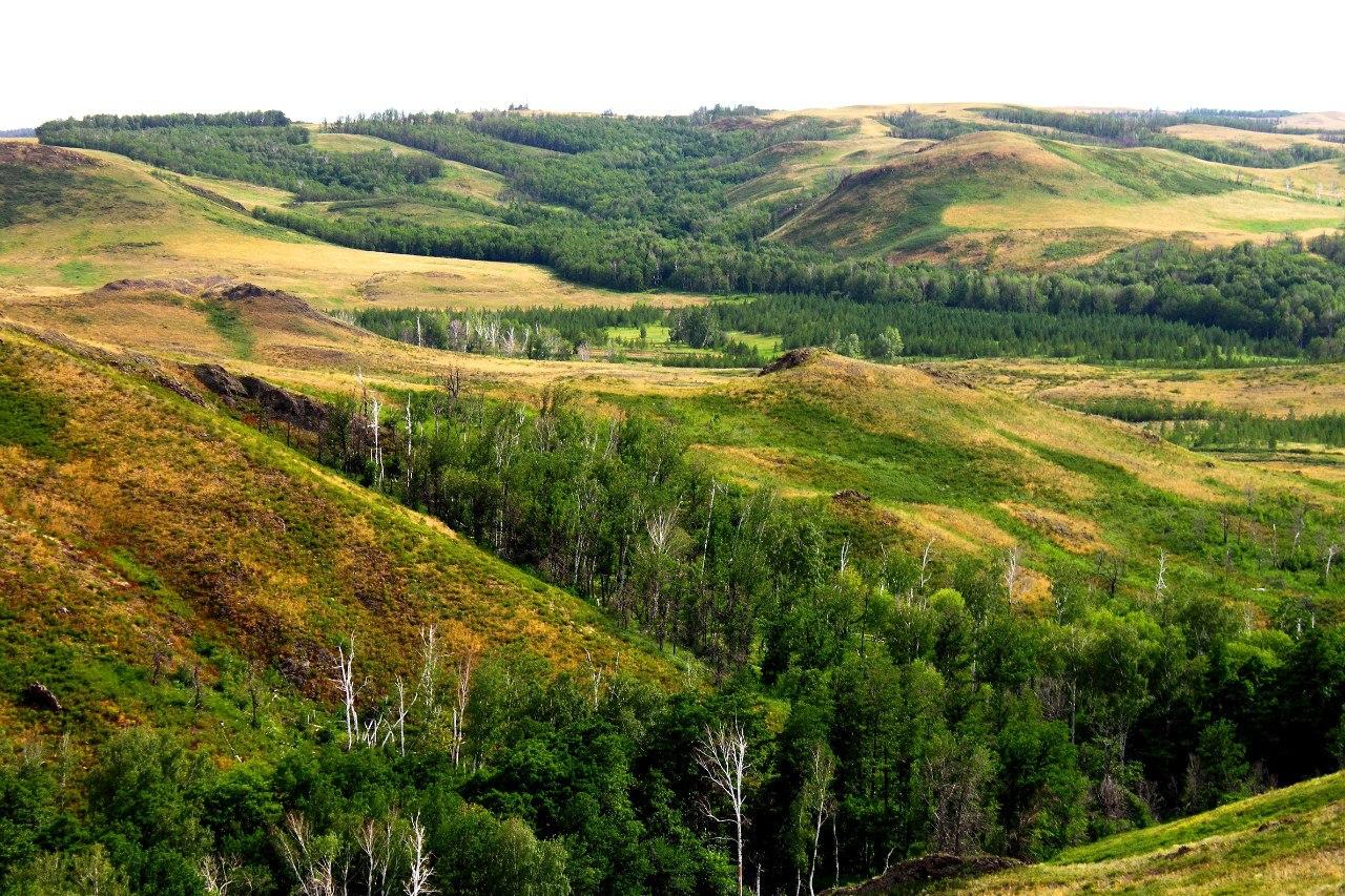 природа тюльганского района фото зарипова, получившая