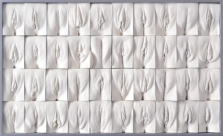 Разные женские вульвы галерея смотреть девушки нижнем