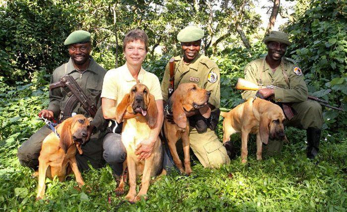 Охотники на браконьеров героизм, животные