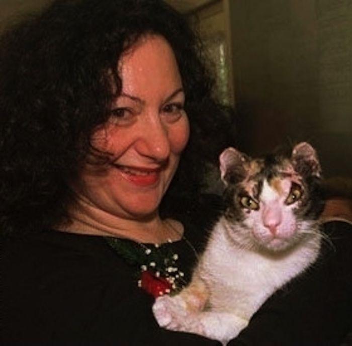 Кошка Скарлетт, спасшая своих котят героизм, животные