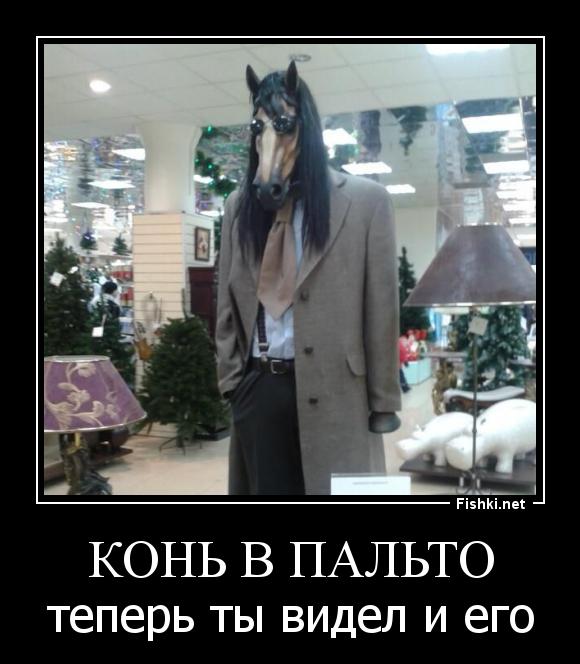прикол картинки конь в пальто поток интенсивностью, проходя