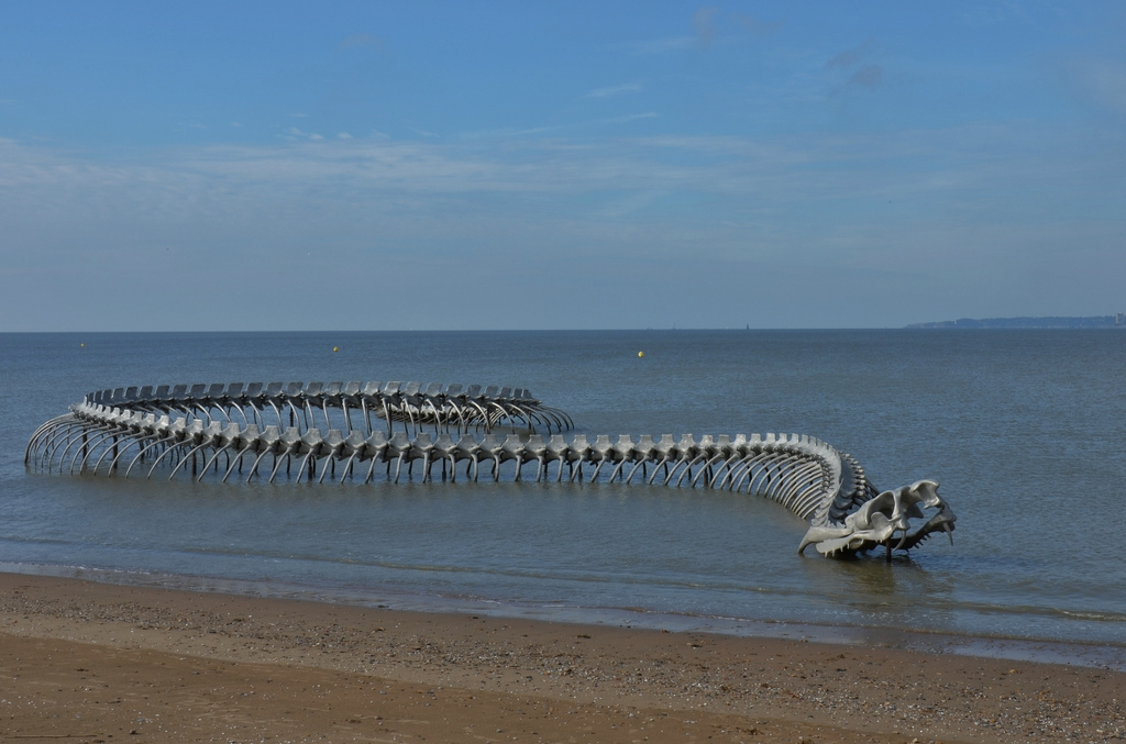 фото морского змея чудовище вид имеет