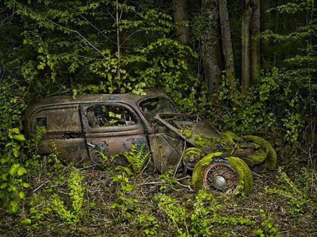 Обои автомобил, лес, брошенный, ржавчина, старый. Разное foto 14