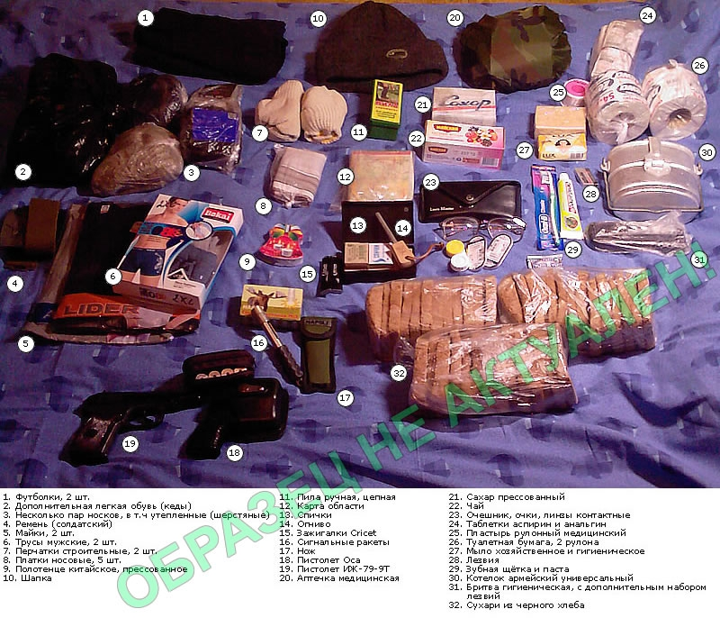 тревожный чемоданчик на случай чс поджелудочная железа