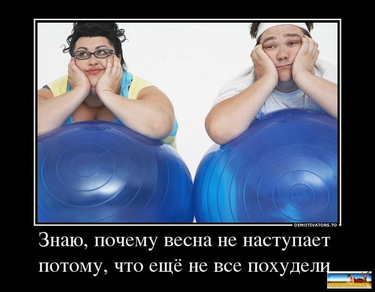 Демотиваторы Про Похудение Новые.