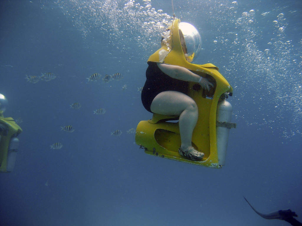 Плавание на лодке прикольные картинки