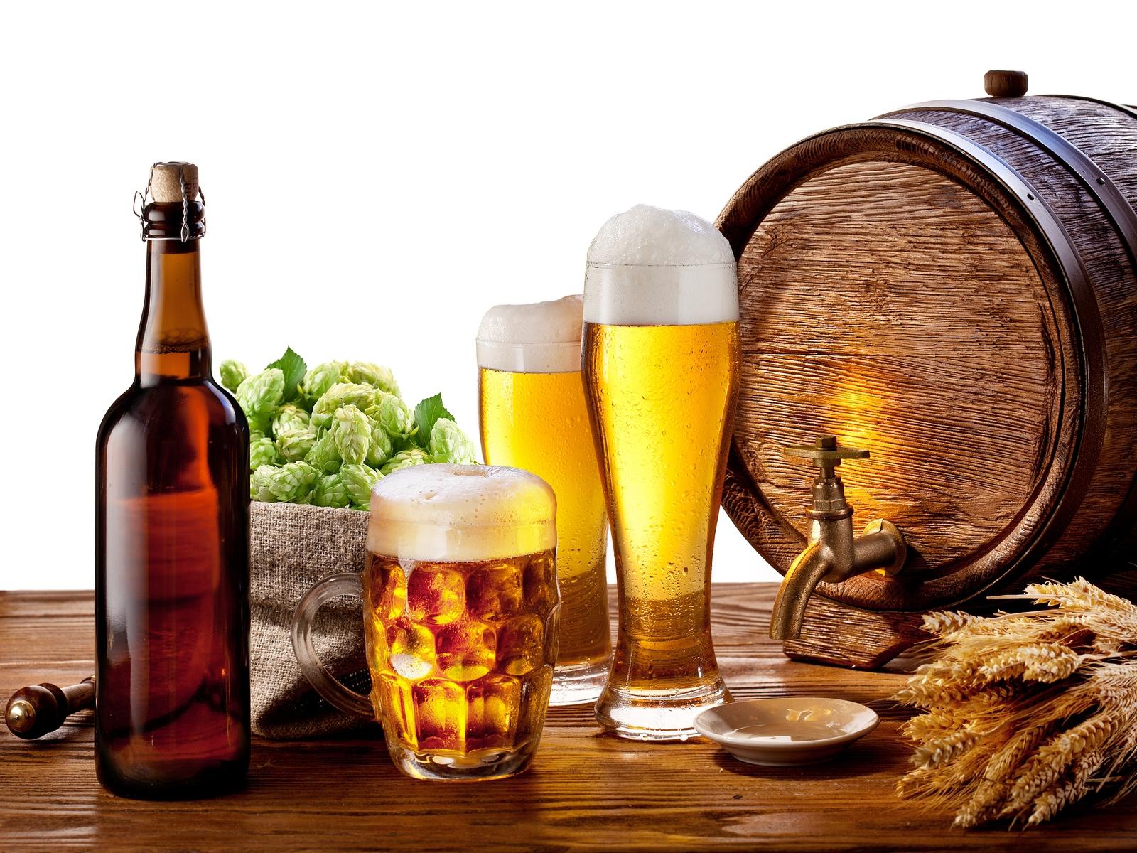 Пиво из мини пивоварни коптильня для дачи холодного копчения купить