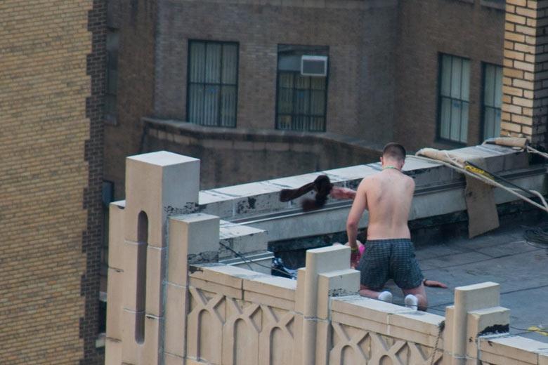 Секс с разносчицей на крыши дома