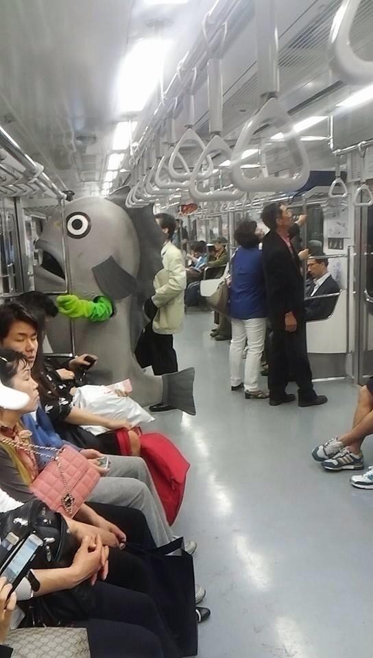 Прикольные картинки в общественном транспорте