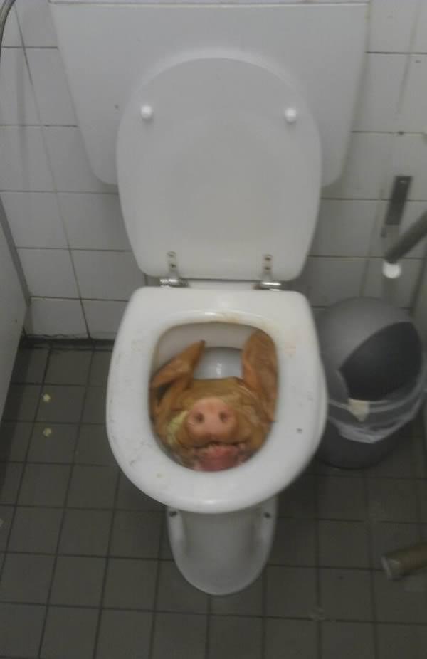 Девушка случайно зашла не в тот туалет