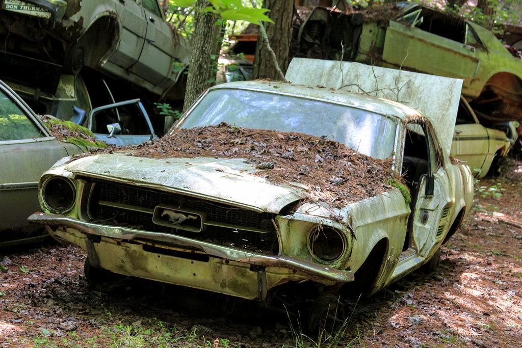 отчетливо дала самые старые машины в мире фото проблем