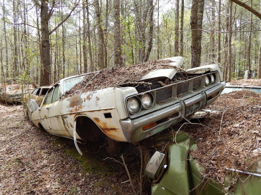 заброшенные авто редкие фото мох еще затопленные
