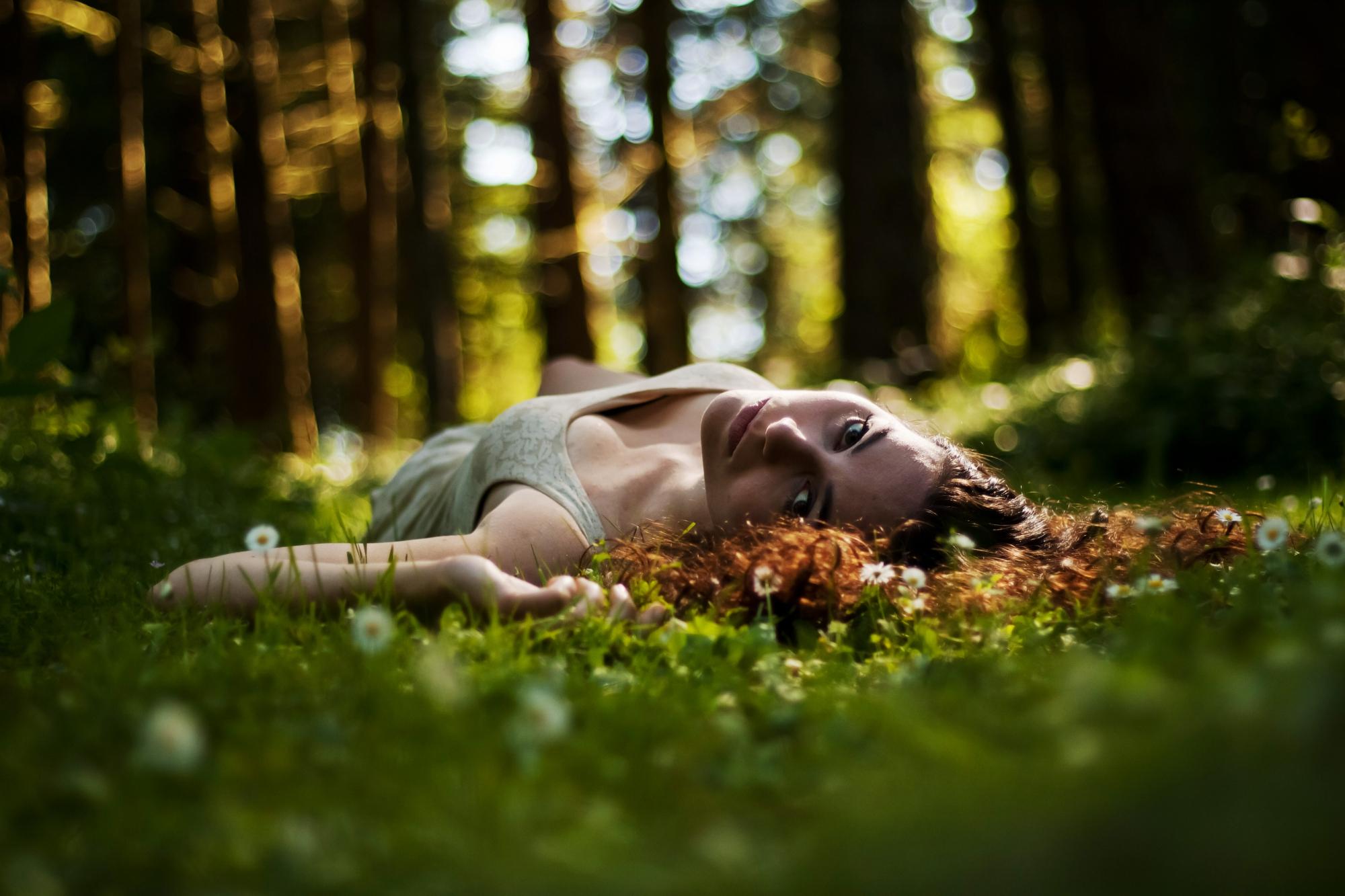картинки релаксация лес берет