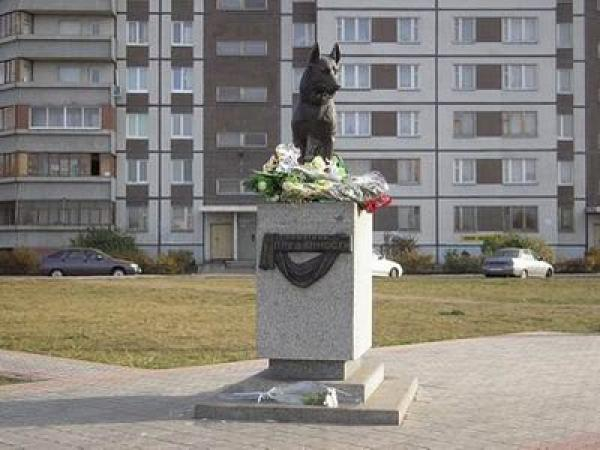 Памятник собаке в тольятти история в крации цены на памятники тула твери