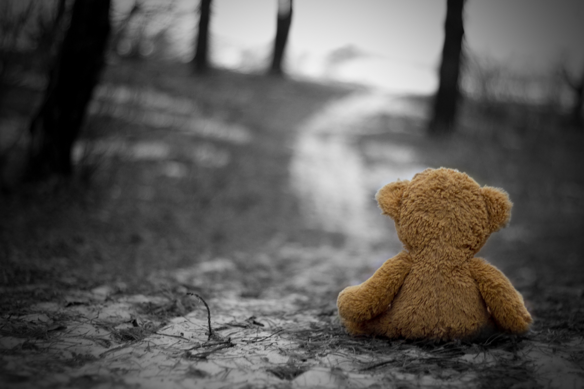 фотограф, картинки про печаль на душе подготовки