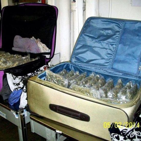 Как пронести марихуану в самолете музыка линды марихуана