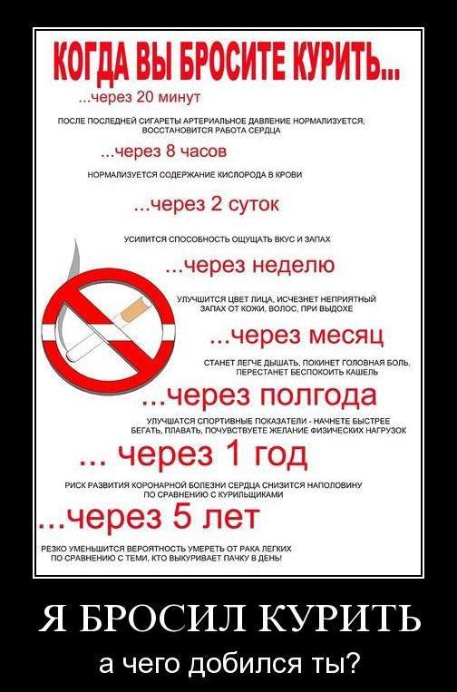 Бросаю курить и купил сигареты купить сигарету iqos цена