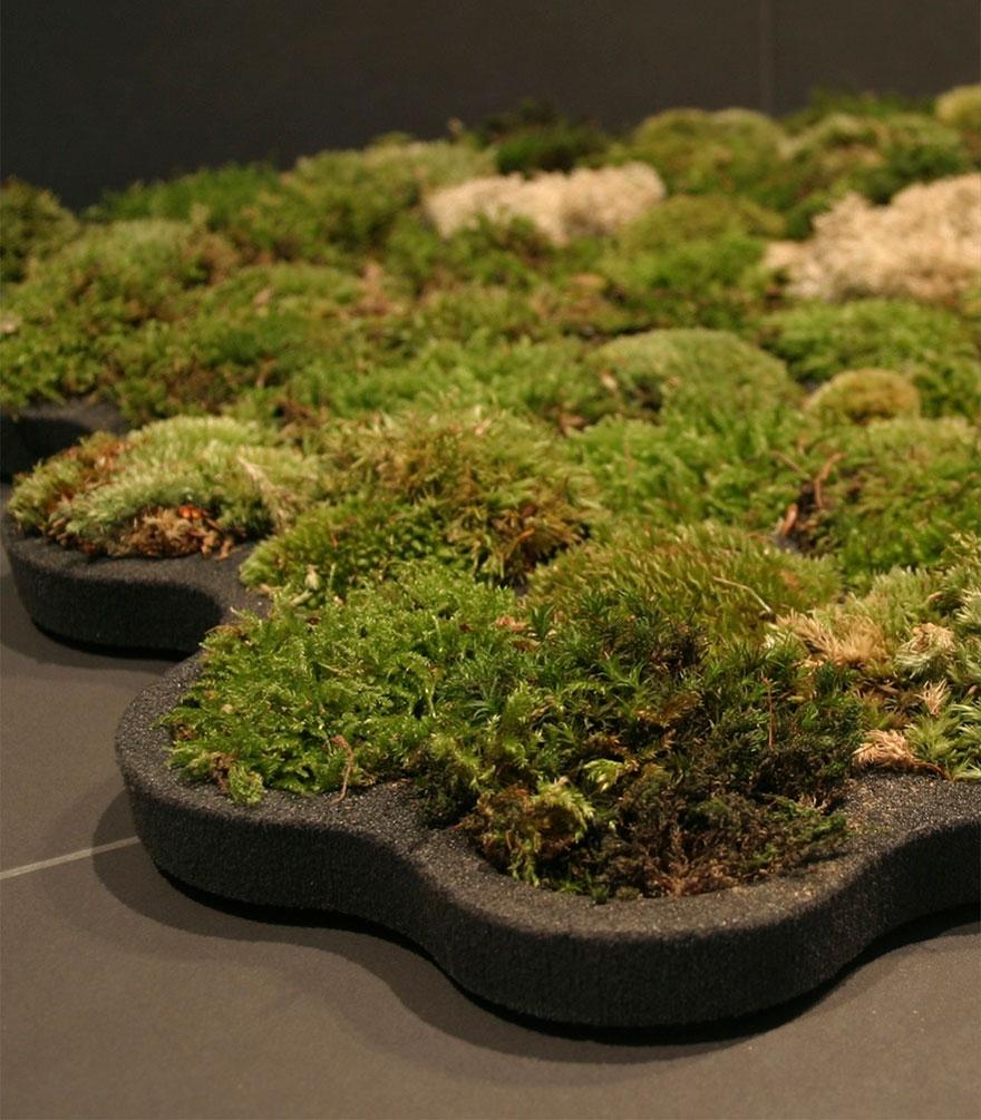 https://cdn.fishki.net/upload/post/201407/23/1287281/green-design-ideas-inspired-by-nature-2-2-1.jpg