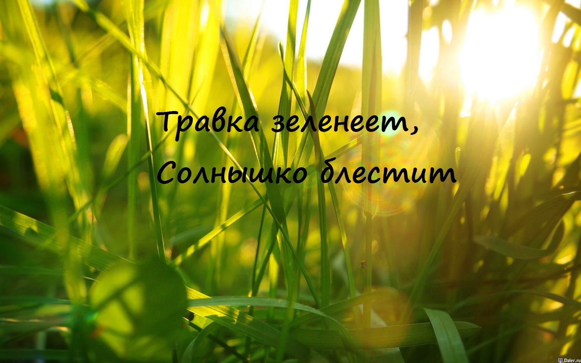 Лариса Черникова  chernikovaru