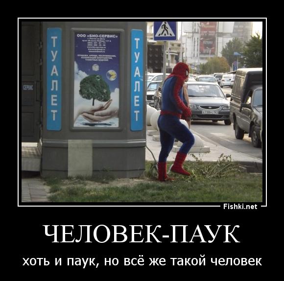 законы демотиваторы про паук время