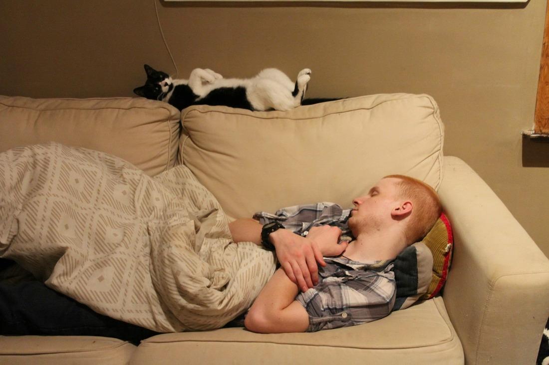 Смешные картинки с сном
