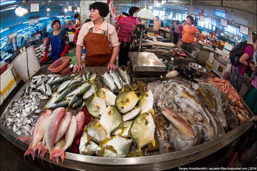 Картинки по запросу рыбный рынок китай