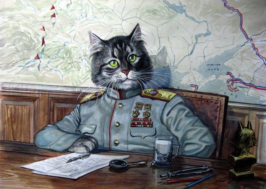 боевые котята картинки подходящие