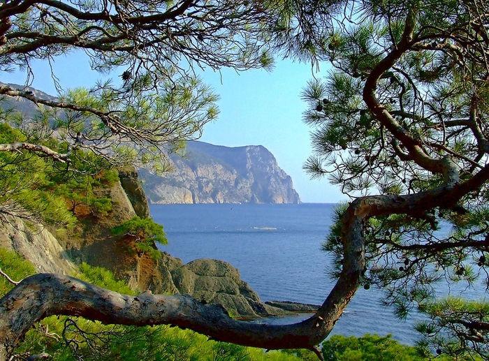 первую очередь фото виды крымского побережья первого класса вместе