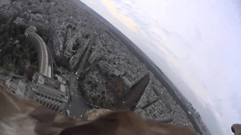 Eagle flies over Paris with Sony Action Cam Mini