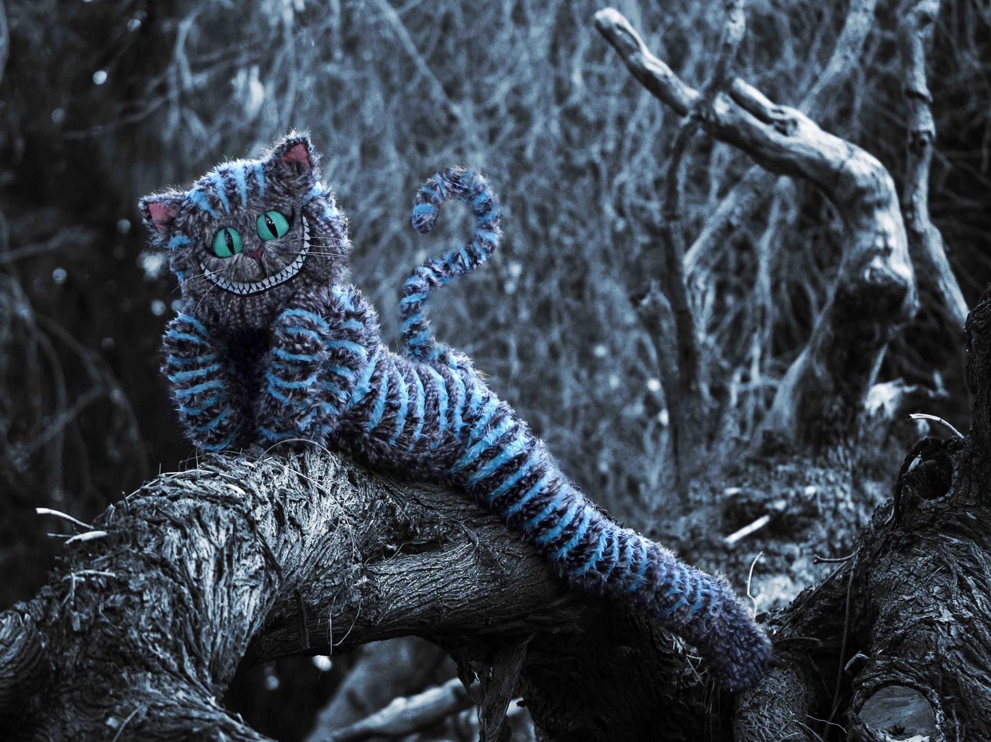 фото кота из алисы в стране формировать сайты