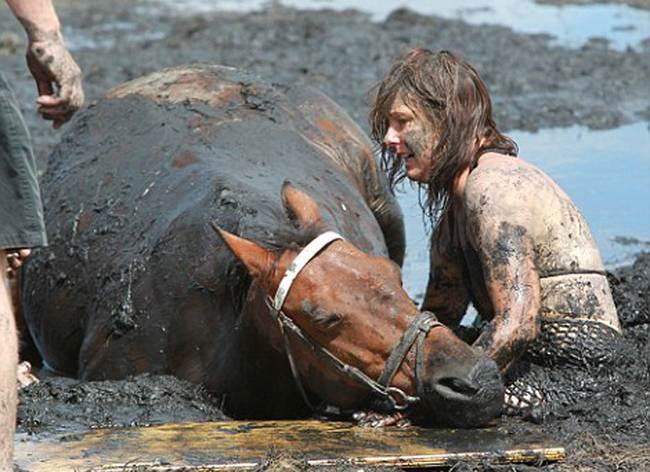 порно ролик девушка конем фото