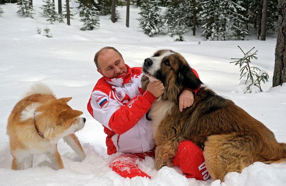 Золотая собака: Клички знаменитых собак