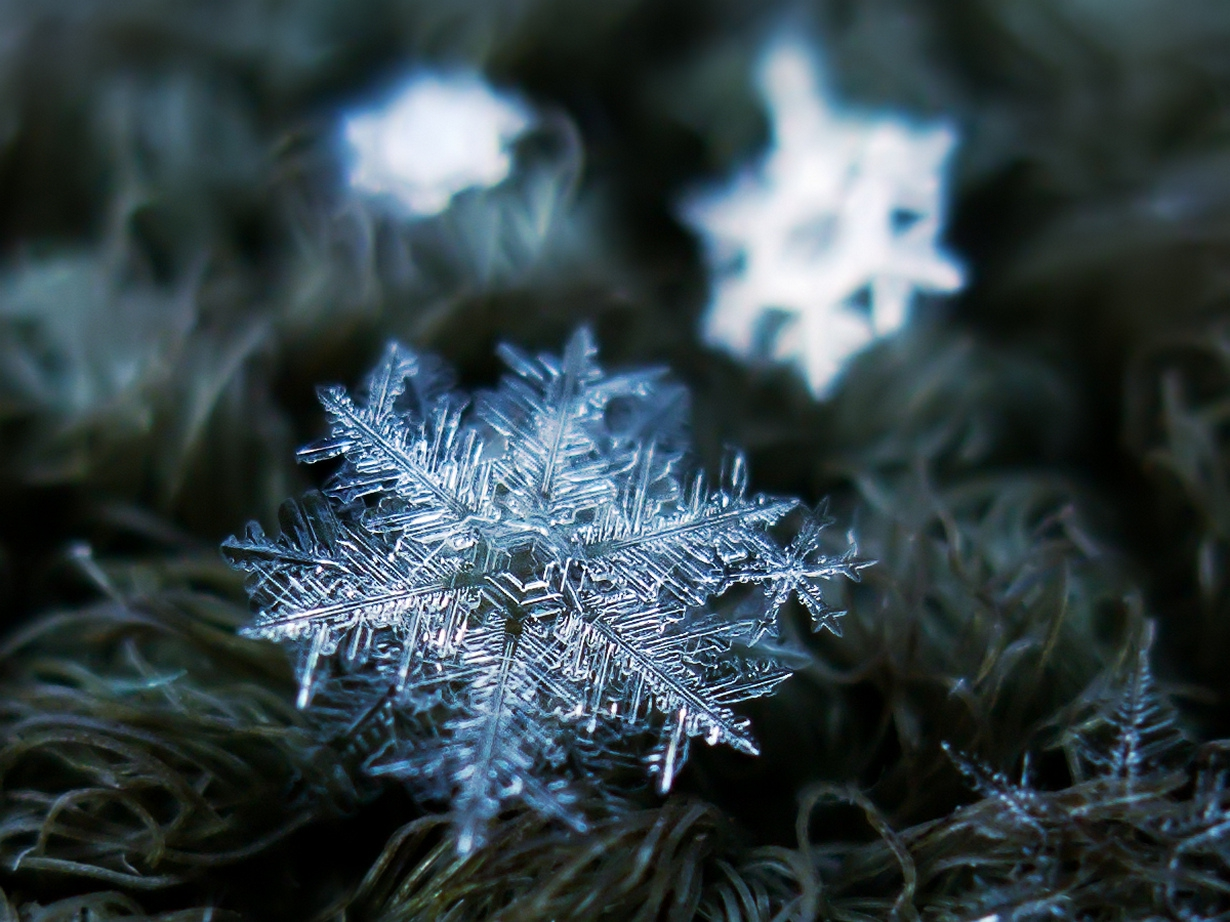 Снежинки картинки фото, перевертыши карандашом картинки