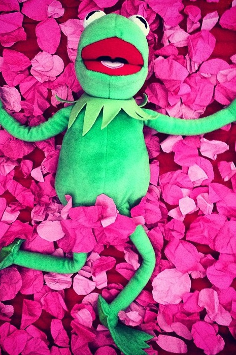 black singles in kermit Kermit the frog is a muppet and one of puppeteer jim henson's most famous creations kermit was performed by henson until his death in 1990 kermit was performed by henson until his death in 1990 since then, he has been performed by puppeteer steve whitmire.