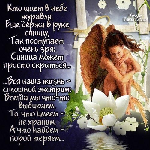 большая открытки со стихами о любви и жизни поддержит туалетный