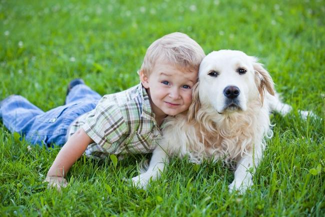 польза собаки для ребенка