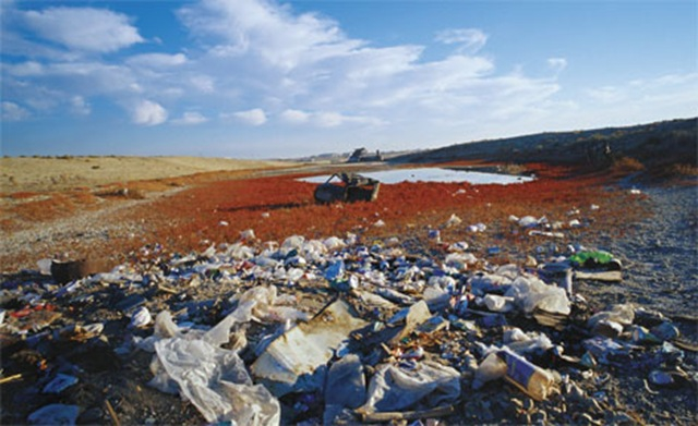 Аральское море и причины его гибели