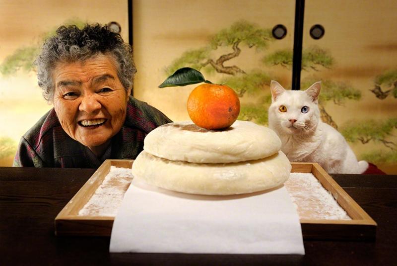 https://cdn.fishki.net/upload/post/201501/12/1383834/21-babushka-i-kot---japonija-2015-fujitravelru.jpg