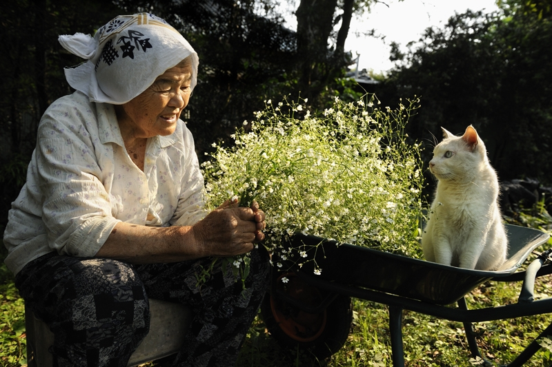 https://cdn.fishki.net/upload/post/201501/12/1383834/3-babushka-i-kot---japonija-2015-fujitravelru.jpg