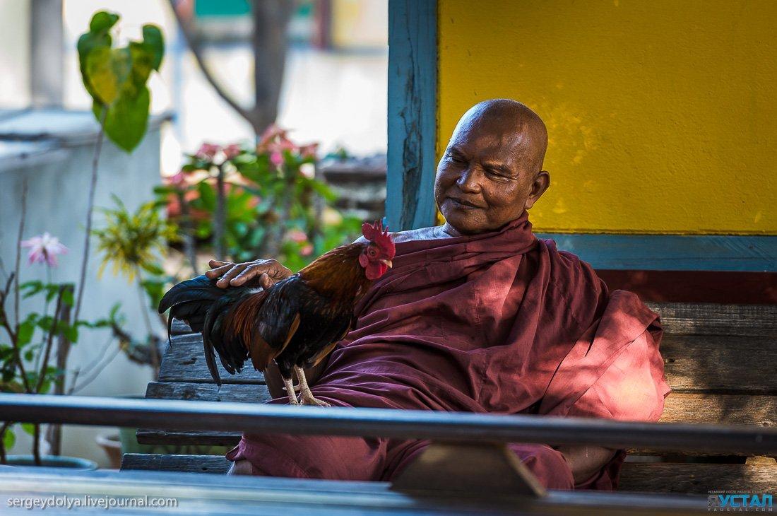 Занимаются сексом монахи