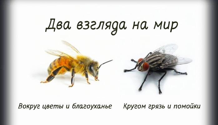 https://cdn.fishki.net/upload/post/201501/14/1386910/eb1800722cb4e40a26f0471a6e9c194d.jpg