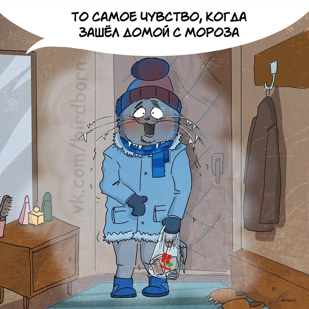 смешные картинки про холод мороз с надписью они остаются