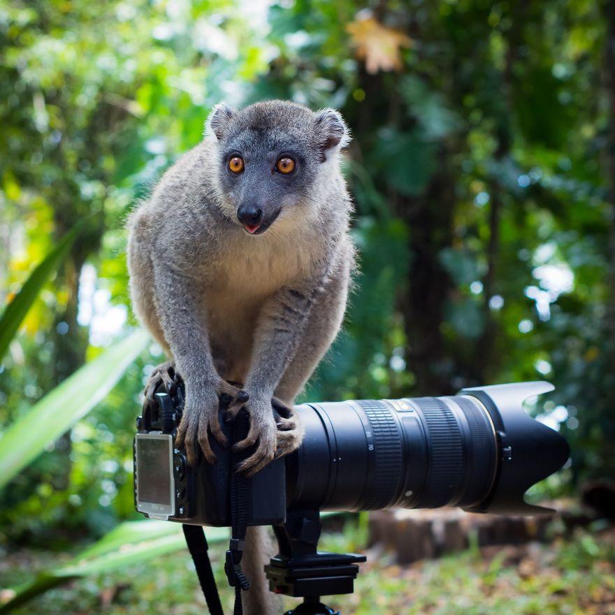 интересные факты из жизни фотографов сделать