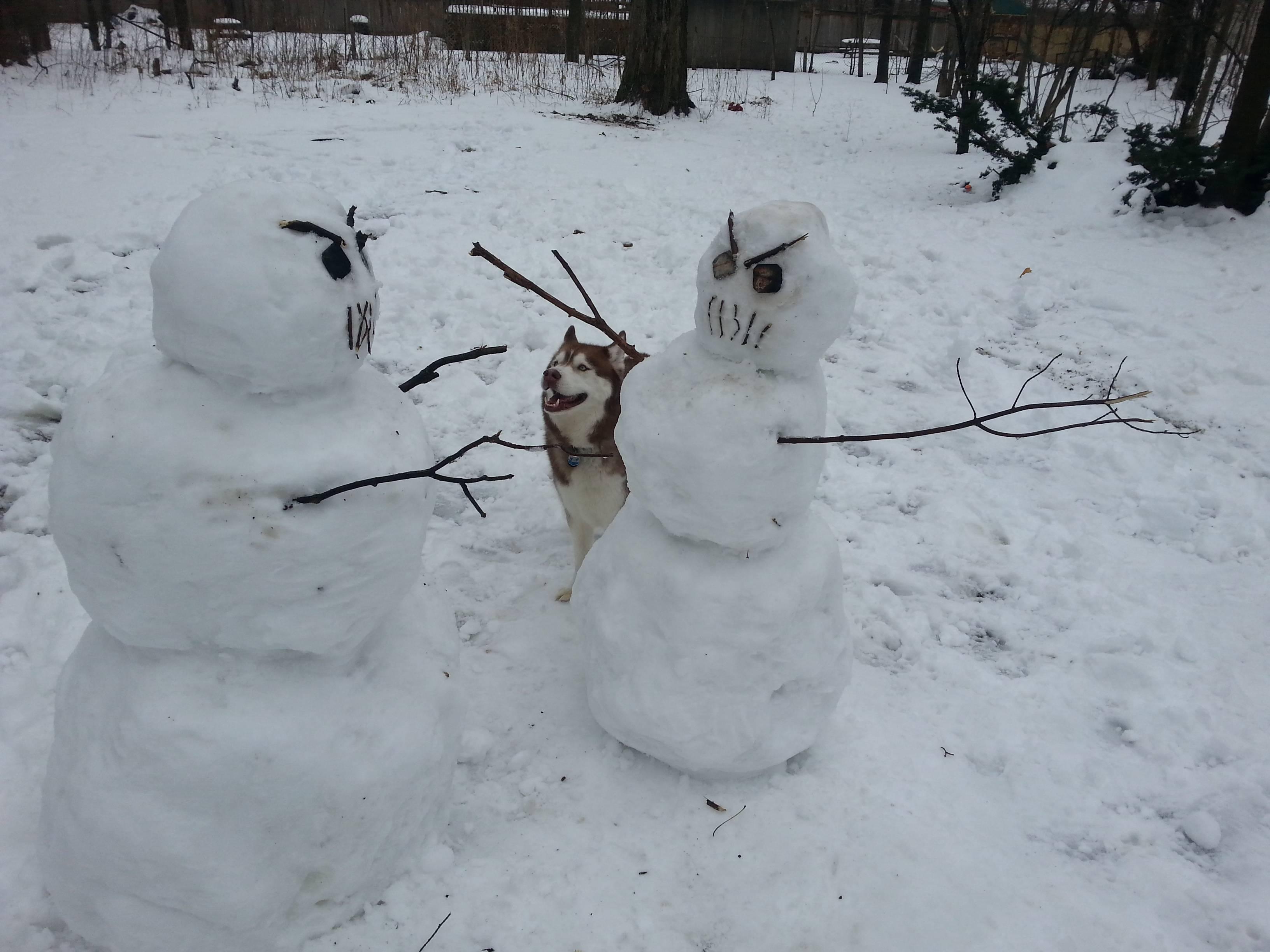 злой снеговик фото ним