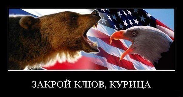 Демотиватор медведь выборы срет