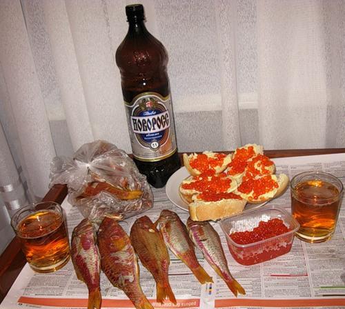 Надписью, смешные картинки пиво с водкой и закуской