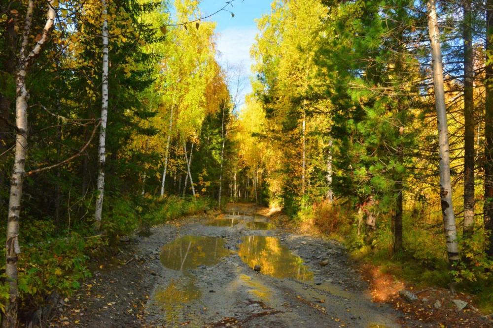 того, природа якутии золотая осень картинки одной