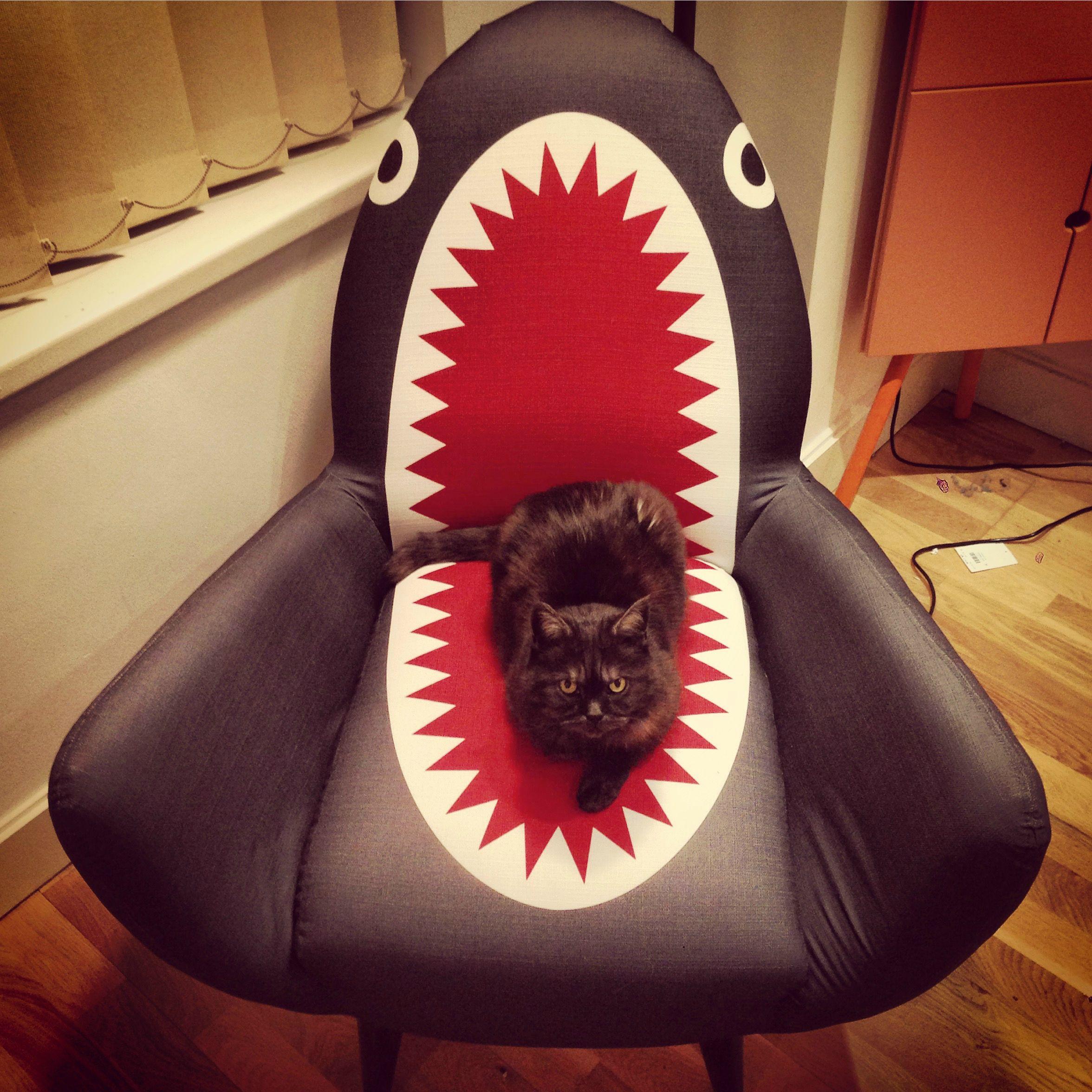 Смешные фото картинки кресла