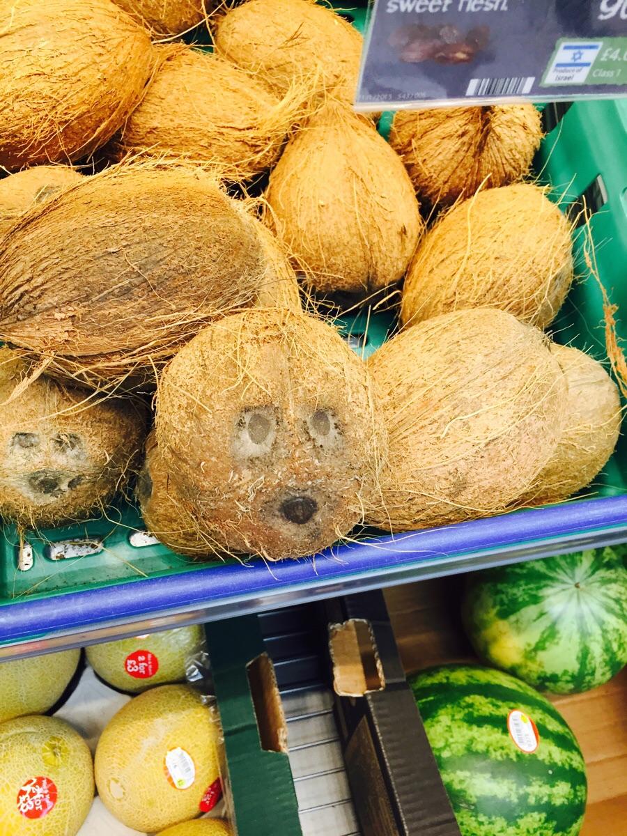 Смешные картинки с кокосом